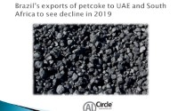 Brazil's exports of petcoke to UAE and South Africa to see decline in 2019